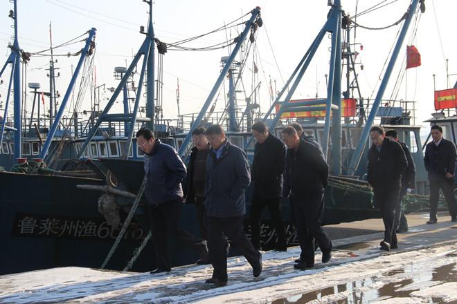 在养马岛中心渔港码头,督察组现场检查了大马力渔船和码头监管部门
