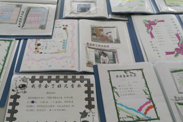 验小学建立学生成长档案图片