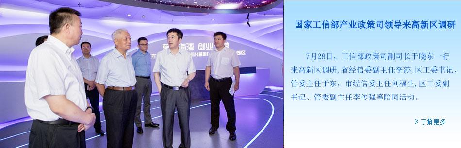 国家工信部产业政策司领导来高新区调研