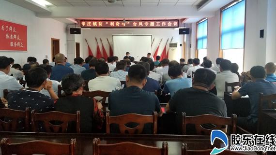 招远市辛庄镇认真做好防台防汛确保生产生活安全有序